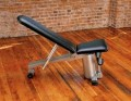 Vectra Vector Incline/Decline Bench (Sterling Silver Frame/Black Upholstery)