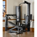 Vectra 1450 Gym (Black Frame & Trim)